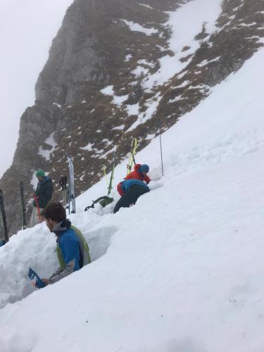 Chablais - Coupe de neige